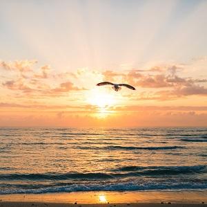 View of sunset off Florida coast
